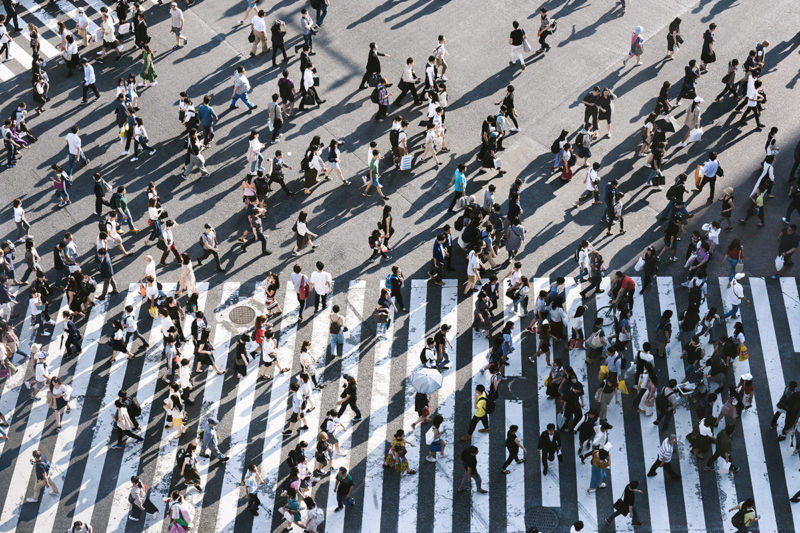 Traffic-Titelbild